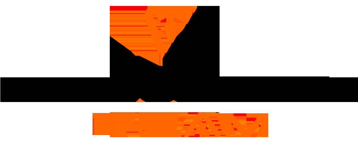 Software Team Logo
